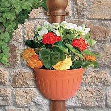 Blumentopf Pflanz Topf Gefäß Regenrohr