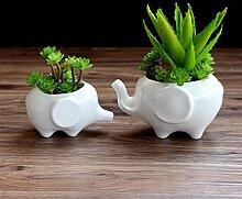 Blumentopf Pflanzgefäße Weiß Elefant Keramik