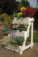 Blumentreppe, Blumenleiter, Pflanztreppe,