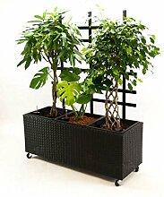 Blumentrog Pflanztrog Raumteiler Polyrattan mit