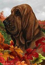 Bob Bloodhound Hund Tamara Burnett Fall Blätter