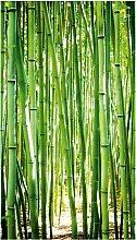 Bodenmeister Fototapete Bambus-Wald grün B/L: