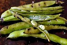 Bohnen, Fava Samen, Bio, NON-GMO, 1000 Samen pro