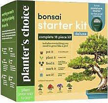Bonsai Baum Anbausatz - Züchten Sie 4 Innen