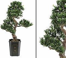 Bonsai Baum Podocarpus, künstlicher Bonsaibaum,