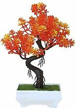 Bonsai-Fortune-Baum mit