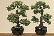 Bonsai im Topf 2sort H48cm Farbmix Kunststoff