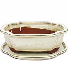 Bonsai-Schale mit Unterteller Gr. 4 - haitang I4 -