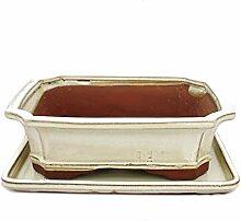 Bonsai-Schale mit Unterteller Gr. 4 - rechteckig