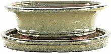 Bonsaischale mit Untersetzer 19.5x16x7cm Oliv Oval