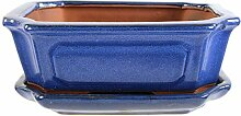 Bonsaischale mit Untersetzer 20x16.5x7cm Blau