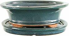 Bonsaischale mit Untersetzer 20x16x6.5cm Blaugrün
