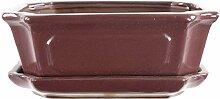 Bonsaischale mit Untersetzer 20x16x7cm Weinrot