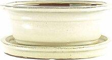 Bonsaischale mit Untersetzer 20x16x8cm Weiß Oval