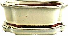 Bonsaischale mit Untersetzer 21x16.5x7.5cm Weiß