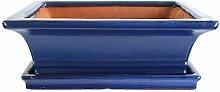 Bonsaischale mit Untersetzer 25.5x19.5x8.5cm Blau