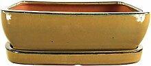 Bonsaischale mit Untersetzer 25.5x20x8cm Oliv