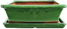 Bonsaischale mit Untersetzer 25.5x21x8.5cm Grün