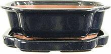 Bonsaischale mit Untersetzer 25.5x21x8.5cm Schwarz