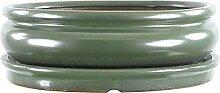 Bonsaischale mit Untersetzer 25x19.5x7.5cm Grün