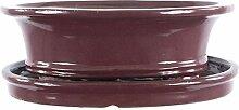 Bonsaischale mit Untersetzer 25x20.5x8cm Weinrot