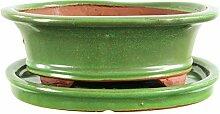 Bonsaischale mit Untersetzer 25x21x8.5cm Grün