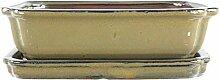 Bonsaischale mit Untersetzer 26.5x20.5x7cm Oliv