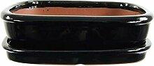 Bonsaischale mit Untersetzer 26.5x20.5x7cm Schwarz