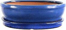Bonsaischale mit Untersetzer 26x20.5x7.5cm Blau