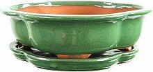 Bonsaischale mit Untersetzer 26x21.5x7.5cm Grün