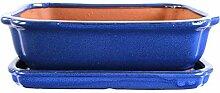 Bonsaischale mit Untersetzer 27x21x7.5cm Blau