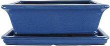 Bonsaischale mit Untersetzer 29.5x22.5x10.5cm Blau