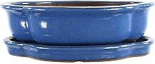 Bonsaischale mit Untersetzer 29x23.5x8.5cm Blau