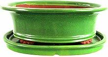 Bonsaischale mit Untersetzer 30.5x24x10.5cm Grün