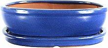 Bonsaischale mit Untersetzer 30.5x24x8.5cm Blau