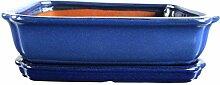Bonsaischale mit Untersetzer 31.5x25.5x8.5cm Blau