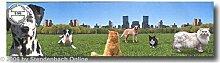 Bordüre selbstklebend Digitaldruck Hunde Katzen