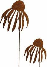 Bornhöft Gartenstecker Sonnenhut Echinacea