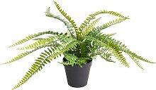 Botanic-Haus Künstliche Zimmerpflanze Farn mit 18