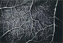 boyteks bis Comfort Teppich, Polypropylen, Grau 120 x 170 cm