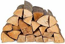 Brennholz Kaminholz Feuerholz Buche 25 cm lang