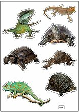 Brett A4Aufkleber-Reptilien selbstklebend