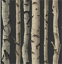 Brewster FD31053Birke Baum Tapete-Gold