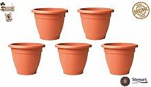BricoLoco 5 Stück Dekorativer Blumentopf für den
