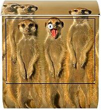 Briefkasten Bild Wand Meerkat Family Tiere Wildnis