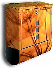 Briefkasten mit Deko Motiv: Pusteblume Orange BK390, Edelstahl Designer Postkasten mit Zeitungsrolle, Mailbox, Designbriefkasten, Postbox