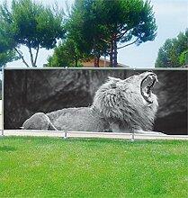 Brise Vue Déco bedruckt: Löwe, 100%, 180x70cm