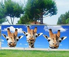 Brise Vue, Garten, Terrasse, Balkon Deko Giraffen, 100%, 180x70cm