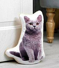 British blau Katze Liebhaber