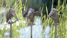 Bronzevogel (rechts)